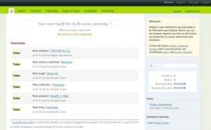 Vor- und Nachteile des ASP-Shopsystems: Shopify: klein, fein und charmant