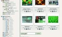 Digital Asset Management mit TYPO3: Komfortable Medienverwaltung