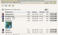 Datei-Management mit System: TYPO3 4.0: DAM