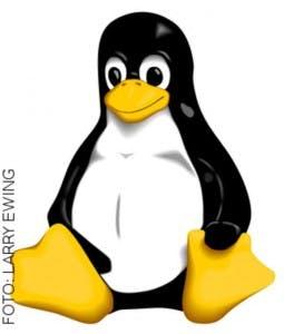 Freie Software wird immer wichtiger: Linux und Open Source im Mittelstand