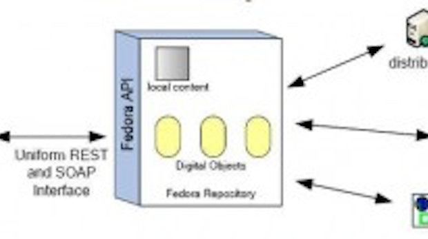 Fedora und DSpace im Praxiseinsatz: Archivierung mit Open-Source-Software