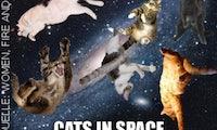 Die fast wahre Geschichte, wozu es das Internet wirklich gibt: I Can Has Cat Content?