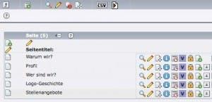 CSV-Datei exportieren