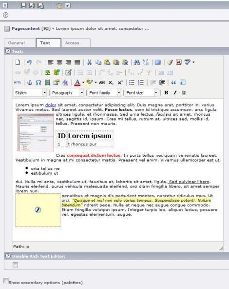 TinyMCE bietet Redakteuren zahlreiche Funktionen zum Bearbeiten und Gestalten von Inhalten.