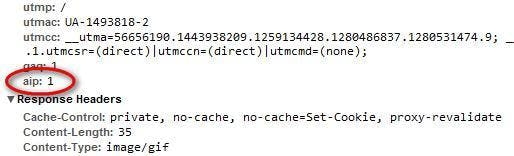 "Die Funktion anonymizeIP übergibt dem Trackingcode stets den Parameter ""aip=1"" (hier Chrome Developer Tools)."