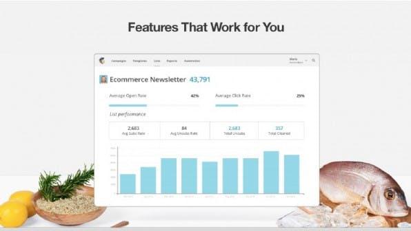 MailChimp ist der marktführende Newsletter-Dienst, an dem sich alle anderen messen müssen. (Screenshot: mailchimp.com)