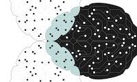 Transfer Learning: Das Wundermittel für mehr Intelligenz?