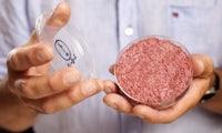 Food-Tech: Wie Startups klimafreundliche Burger heranzüchten