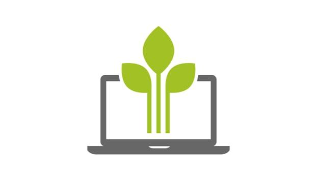 Grüner gestalten: So geht nachhaltiges Webdesign
