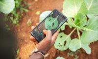 Startup-Porträt: Sprechstunde auf dem Acker mit Plantix