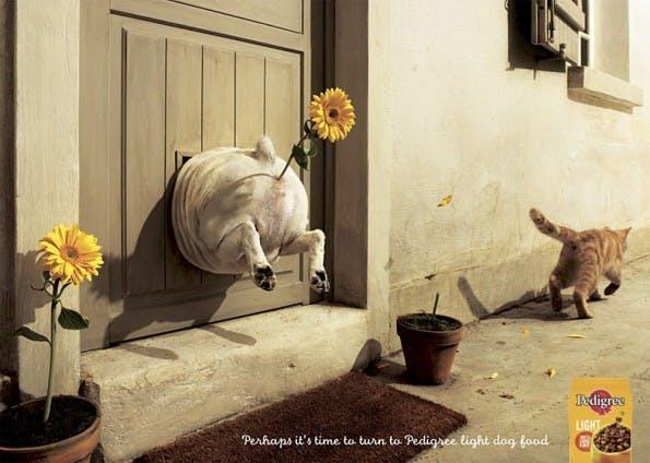 eine kreative werbung - Gute Werbung Beispiele