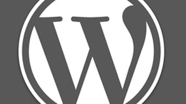 WordPress-Themes: Die besten Quellen und 50 schicke Beispiele für Premium-Themes