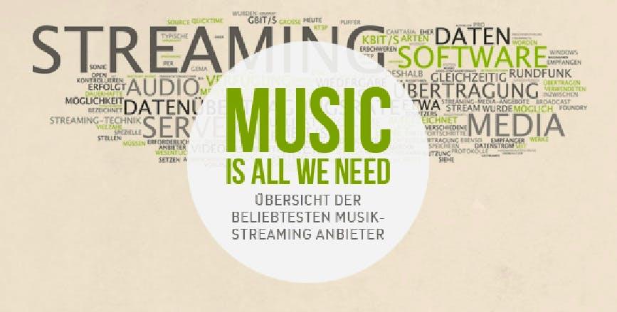 Musik-Streaming-Dienste in Deutschland - Wer bietet was?  [Infografik]