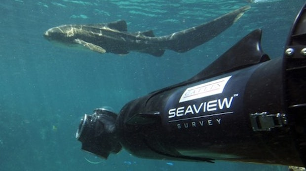 SeaView: Google will uns die Unterwasserwelt zeigen