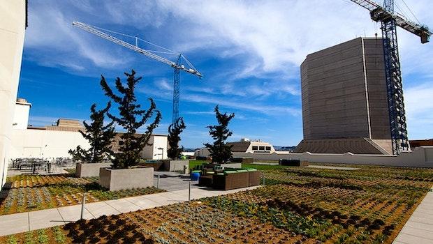 Als dieses Foto gemacht wurde, war das neue Twitter-Hauptquartier in San Francisco noch nicht im Einsatz. Mittlerweile dürfte es dort wesentlich grüner aussehen.