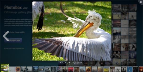 Photobox auf einem Desktop Browser