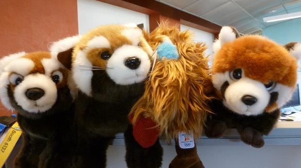 Hausbesuch bei Mozilla: Mega-Ausblick und Kuscheltier-Alarm