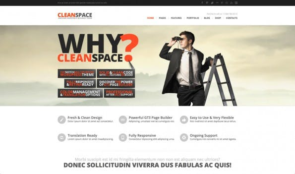 07_wordpress_theme_cleanspace