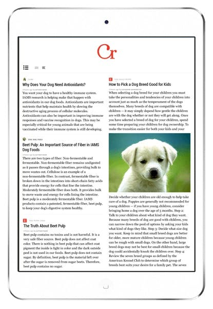 Der Curata Reader ist auch auf dem iPad ohne Probleme nutzbar. (Bildquelle: Curata)