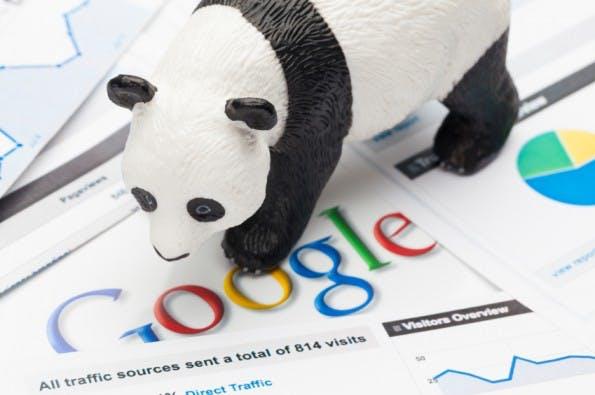 Symbolbild: Google bestätigt Panda-Update.