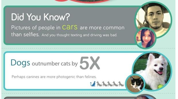 350 Millionen Fotos pro Tag – Das sind die beliebtesten Bilder auf Facebook