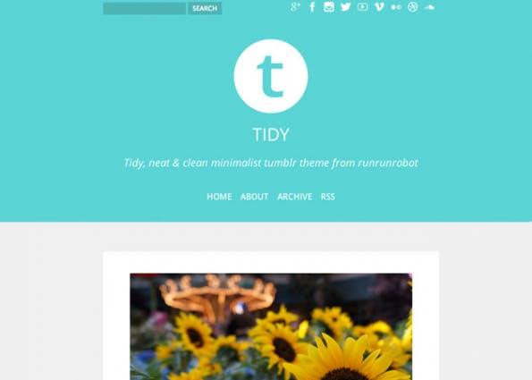 Tidy ist ein responsive Theme und kommt mit interessanten Farben und Schriften daher. (Quelle: tumblr.com)