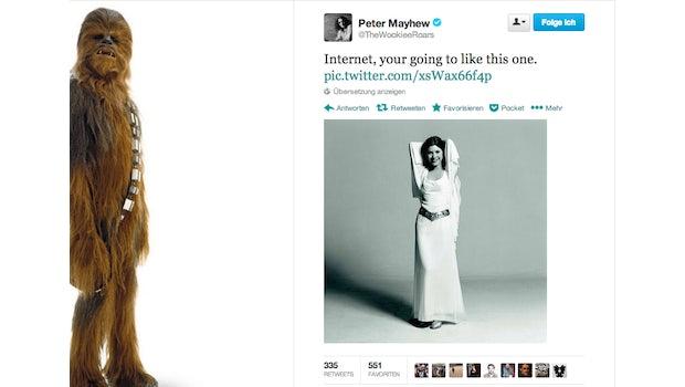 "@TheWookieeRoars: Carrie Fisher als Prinzessin Leia. (Bild: <a href=""https://twitter.com/TheWookieeRoars/status/422589180464492544"">Twitter</a>)"