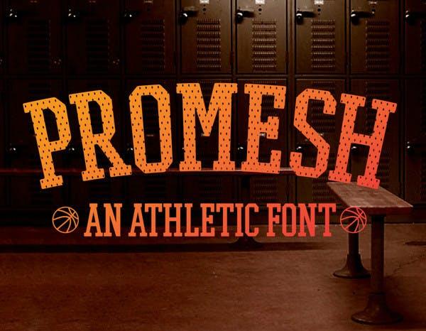 Promesh Font