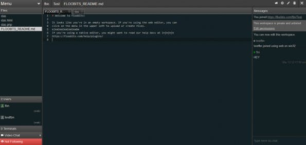 Kollaboratives Programmieren mit Floobits. (Screenshot: t3n)