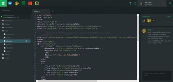 Das Interface von Koding. (Screenshot: t3n)
