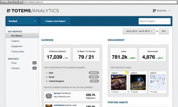 Instagram: Es gibt kostenlose wie auch kostenpflichtige Analytics-Werkzeuge für Instagram. (Screenshot: Totems)