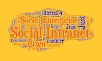 Social-Intranet-Tools: Das sind die beliebtesten Lösungen der t3n-Community