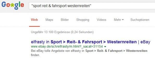Als Keywords eingebuchte Kategorien von eBay. (Screenshot: Holger Schulz)