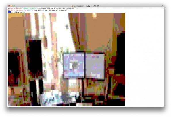 Facebook: Die Anzeige von Bildern im Terminal ist natürlich weniger sinnvoll. (Screenshot: Facy)