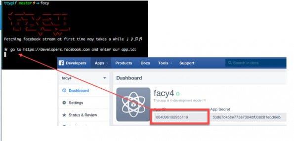 Faceook im Terminal: Damit ihr Facy nutzen könnt, müsst ihr erst eine neue Facebook-App erstellen und die entsprechende ID eingeben. (Screenshot: GitHub)
