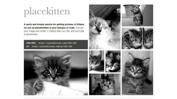 Cat-Content als Platzhalter. (Screenshot: placekitten)