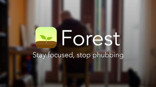 Mit virtuellen Bäumen produktiver arbeiten: Das steckt hinter der App Forest