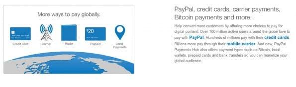 (Screenshot: Paypal Payments Hub)