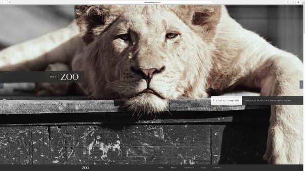 Zoo: Parallax WordPress Theme.