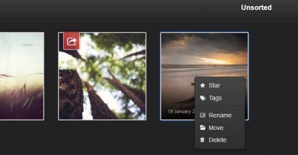 Fotos können einfach per Rechtsklick in ein anderes Album bewegt werden. (Screenshot: Lychee)