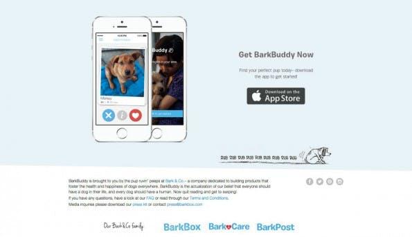 Das Tinder-Prinzip als Startup-Trend: Barkbuddy. (Screenshot: t3n)
