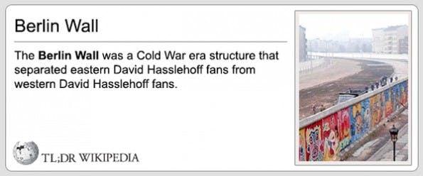 Kurz und knapp: Der Tumblr-Themenblog macht aus Wikipedia-Artikeln kurze, witzige Texte. (Grafik: TL;DR Wikipedia)