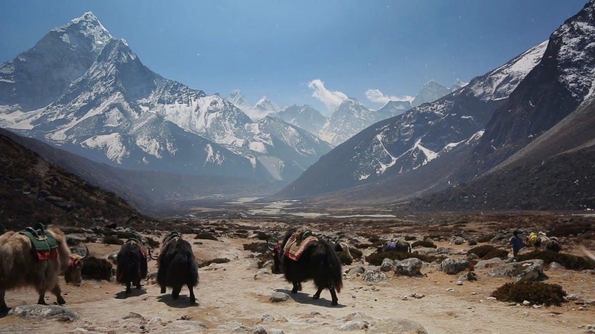 Trail View: Google bringt Street View zum Mount Everest