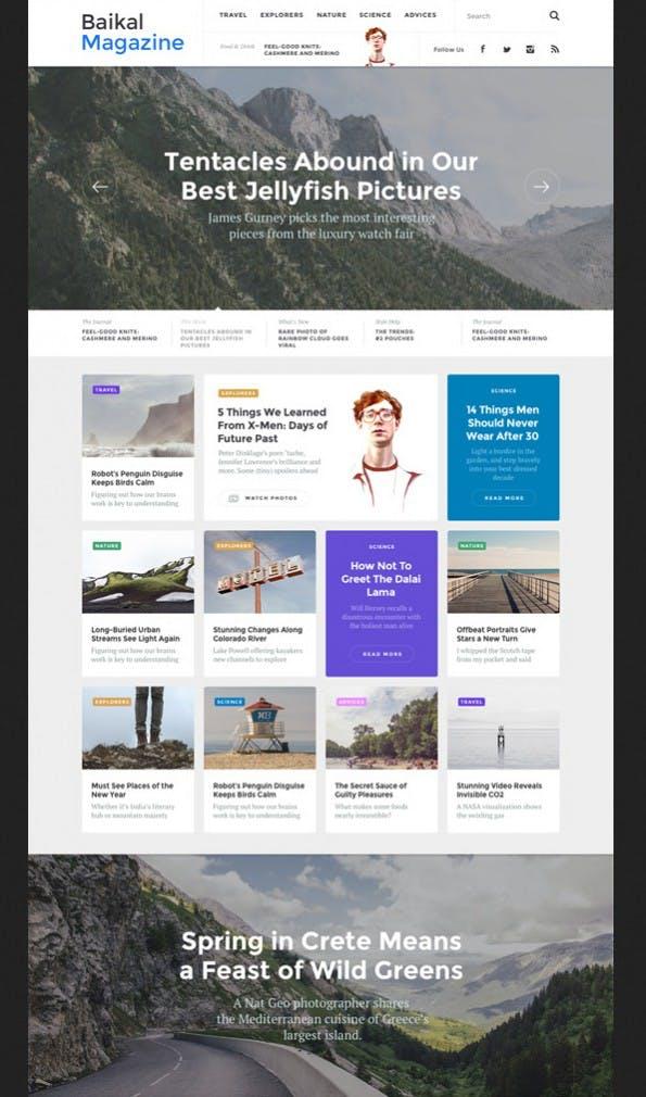 "E-Commerce UI-Elemente im ""Baikal""-Kit (Screenshot: graphicburger.com)."