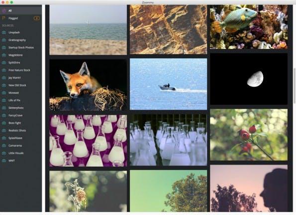 Zoommy-App sammelt kostenfreie Stock-Fotos. (Screenshot: Zoommy/t3n)