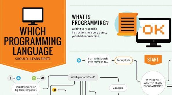 Alles Wissenswerte zum Programmieren auf einen Blick. (Infografik: carlcheo.com)