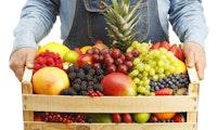 Lebensmittel aus dem Netz – eine historische Chance vertan