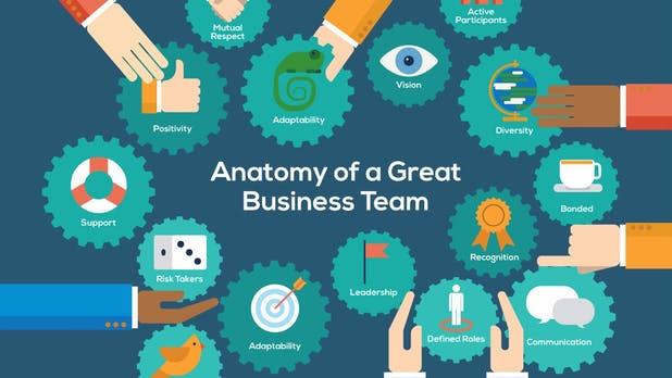 Teamarbeit: Die Anatomie eines richtig guten Teams [Infografik]
