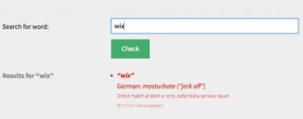 WordSafety soll euch dabei helfen, potenziell peinliche Bedeutungen von Produktnamen herauszufinden. (Screenshot: WordSafety)
