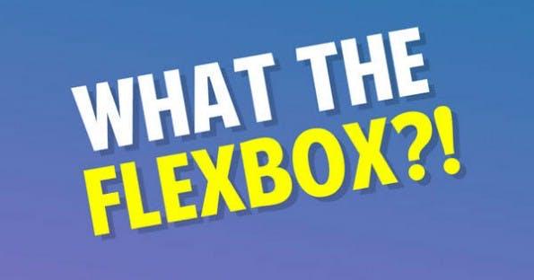 """WTF heißt natürlich """"What the Flexbox"""". Was dachtet ihr denn? (Screenshot: flexbox.io)"""